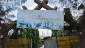 Sundarban Mangrove Retreat